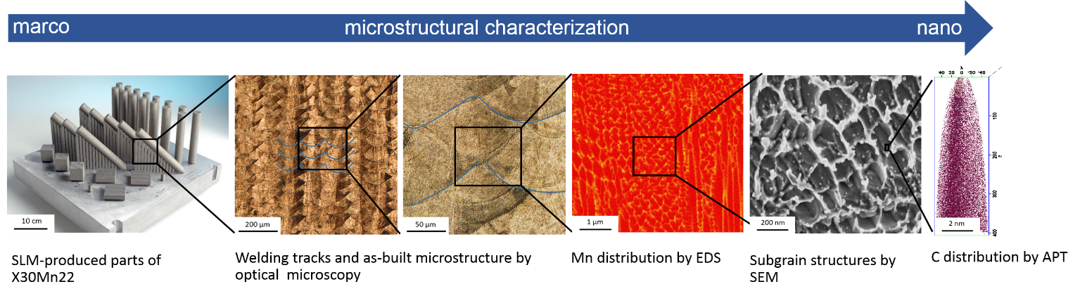 Microstructural analysis of SLM-produced parts of X30Mn22 at various length scales by LOM, SEM, EDS and APT.